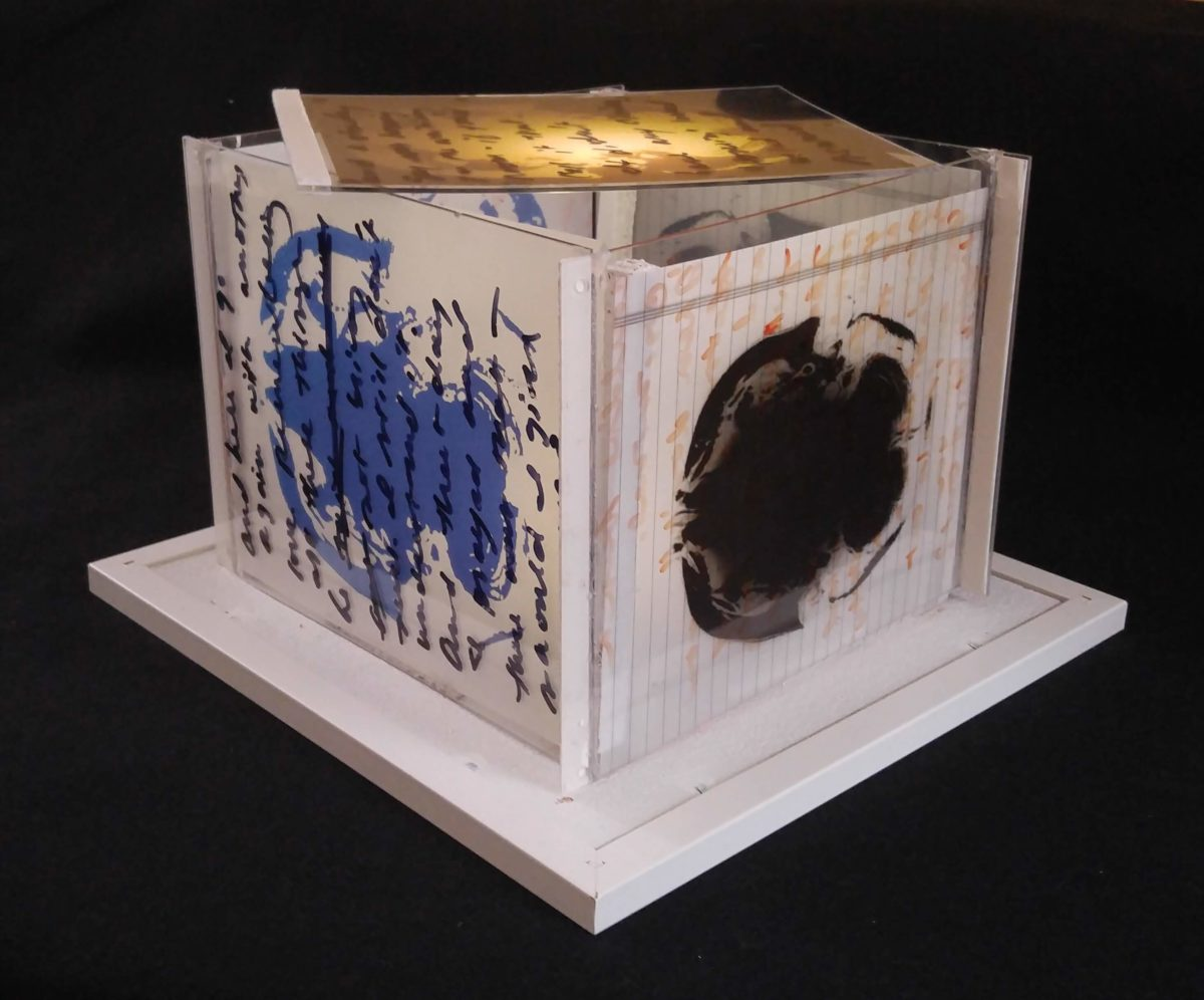 Untitled (Brain Light Box). Illuminated Mixed Media box. 13 x 13 x 9. 2015